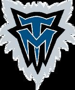 Minnesota timberwolves 1997-2008 a
