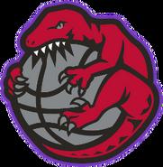 Toronto raptors 1995-2006-aa