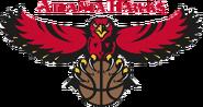 Atlanta hawks 1995-2007
