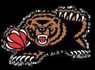 Memphis grizzles 2002-2004 a