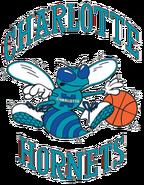 Charlotte hornets no