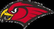 Atlanta hawks 1998-2006 a