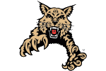 Wildcats1997-2012a1