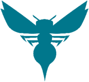 Charlotte hornets 2014-pres a
