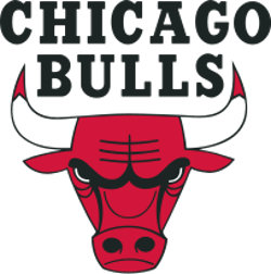 File:Chicago bulls.png
