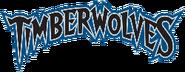 Minnesota timberwolves 2009-pres-w