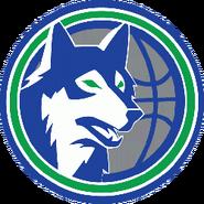 Minnesota timberwolves 1990-1996a