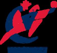 Washington wizards 2012-2015