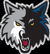 Minnesota timberwolves 2009-present a