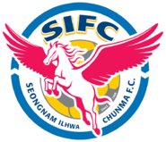 Seongnam FC (2006)