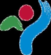 Seoul Metropolitan Government Amazones WFC