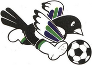 Kookmin Bank FC (1983)