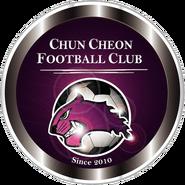 Chuncheon Citizen FC (2011)