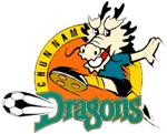 Jeonnam Dragons FC (1995)