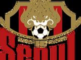 FC 서울