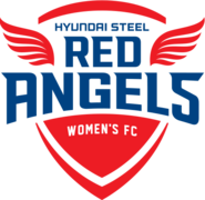 Incheon Hyundai Steel Red Angels WFC