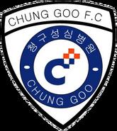 Seoul Pabal FC (2007)