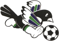 Cholla Kookmin Bank Kkachi FC