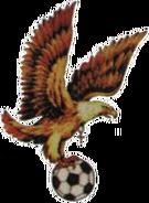 Cholla Hallelujah Eagles FC