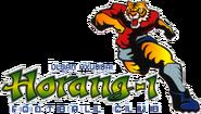 Ulsan Hyundai FC (1997)