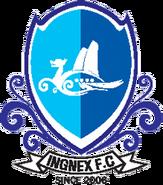 Hongcheon Idu FC (2007)