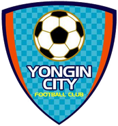 Yongin City Government FC (2010)