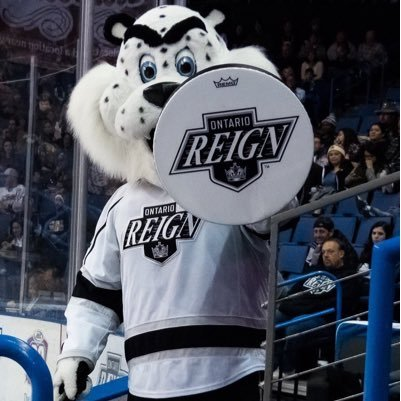 kingston ontario reign sportsmascots wikia fandom powered by wikia. Black Bedroom Furniture Sets. Home Design Ideas