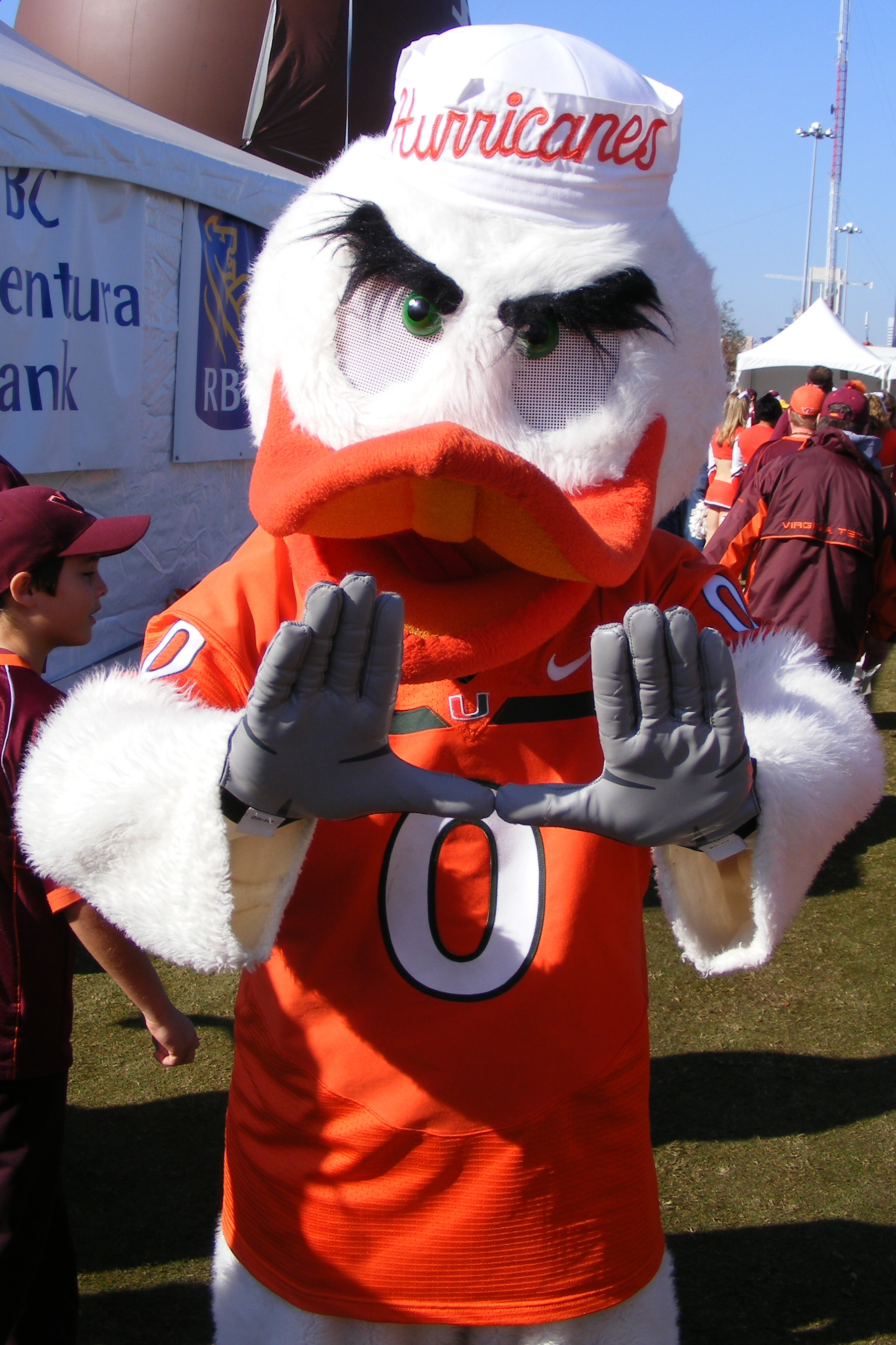 Sebastian the Ibis (University of Miami) | SportsMascots