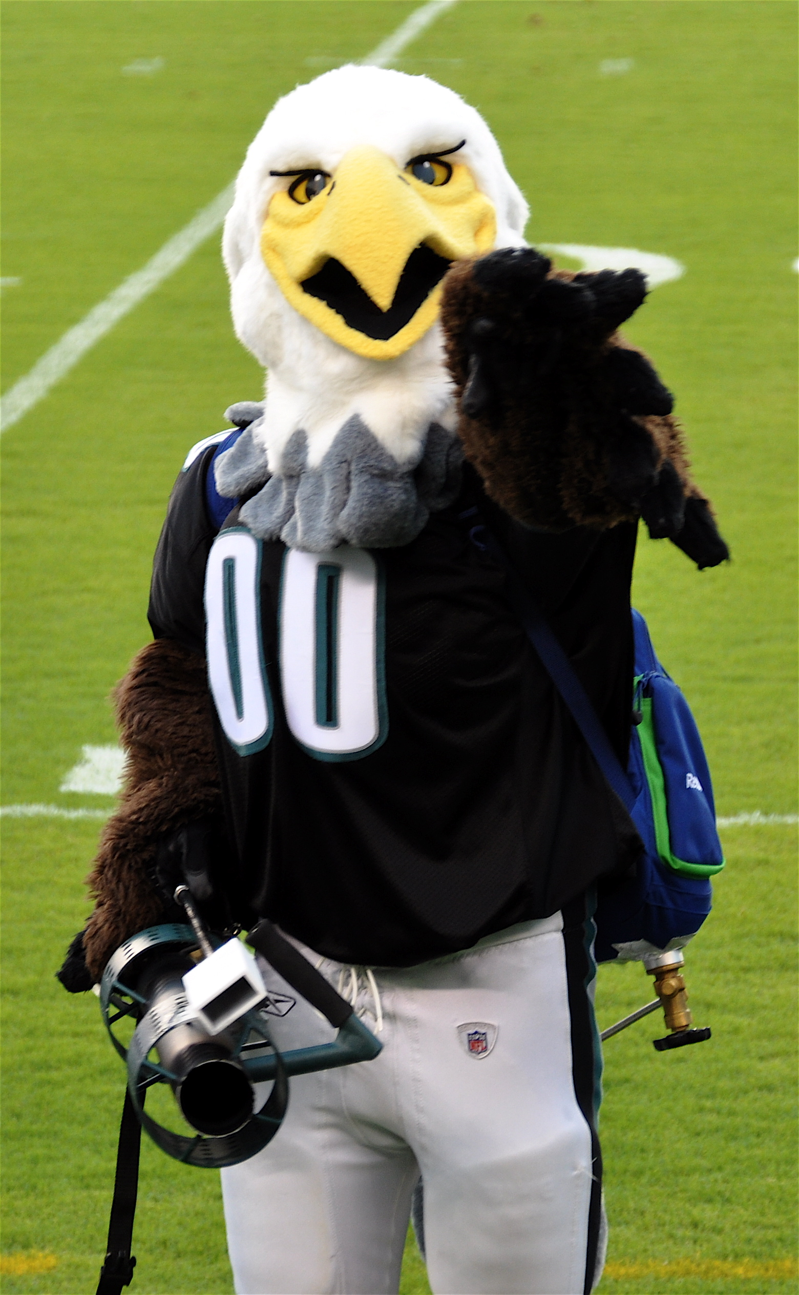 Swoop Philadelphia Eagles Sportsmascots Wikia Fandom