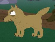 Mangydog