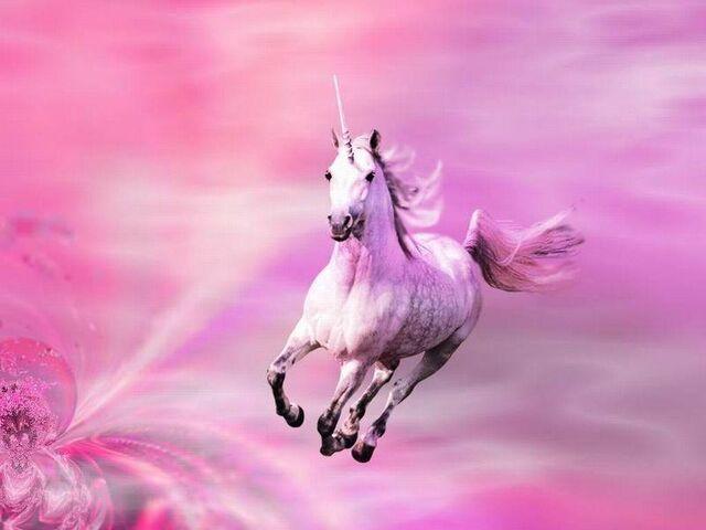 File:Unicorn-unicorns-10796170-1024-768.jpg