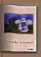 Druidus Schnikum
