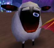 One eye sheep