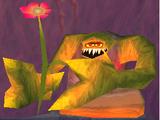 Giant Pansies