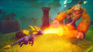 Spyro Reignited Strongarms Treetops