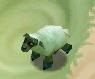 Sheep SSL