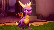 Spyro Reignited Trilogy 001 Press Release 1522917618