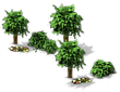 File:Decoration Grove.png