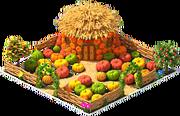 Pumpkin Yard