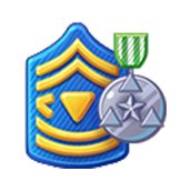 Badge Military Level 23