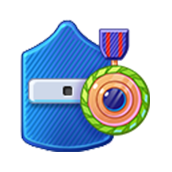 Badge Military Level 29