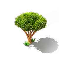 File:Dragon Tree.png