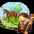 Contract Breaking in Horses