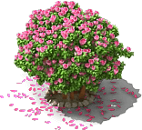 File:Rhododendron.png