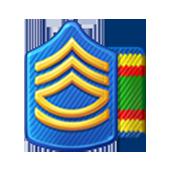 Badge Military Level 12