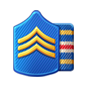 Badge Military Level 8