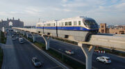 RealWorld Swallow Train
