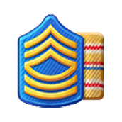 Badge Military Level 14