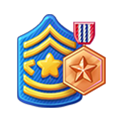 Badge Military Level 20