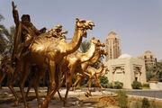 RealWorld Desert Oasis Installation
